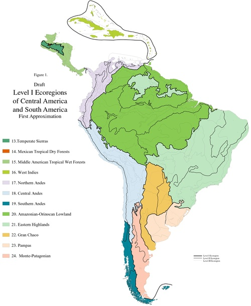 Ecoregion Maps and GIS Resources on major rivers in south america, map of northern ca wine country, map of northern east coast usa, map of north america natural resources, topography of northern south america, northern part of south america, map of north america without labels, map of latin america, map of northern lebanon, map of the northern america, political map of america, map of northern fiji, map of northern adriatic, map of northern ukraine, map of eastern north america, map of northern jordan, map of central america, map of northern south carolina, map of northern european rivers, map of northern wisconsin,